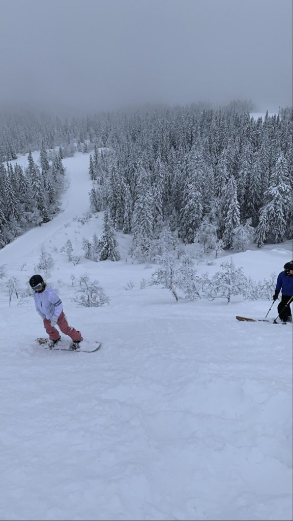 Snowboarder I snødekt alpinbakke