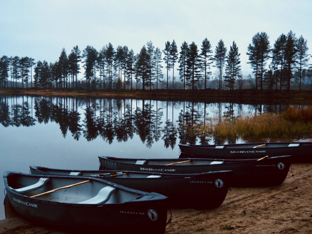 Canoes at the water's edge with forest in the background